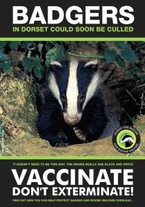 Dorset BBW Leaflet front