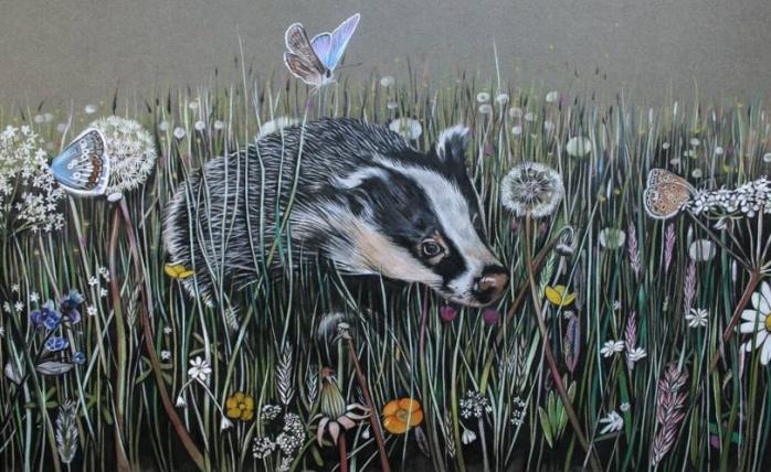 sam-new-badger-cropped