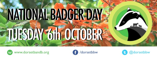 badger day